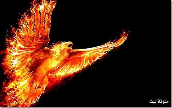 phoenix-laith9000